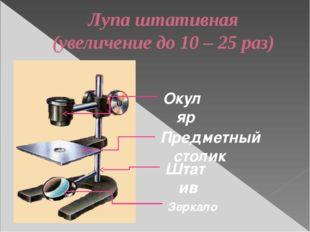 Лупа штативная (увеличение до 10 – 25 раз) Предметный столик Штатив Зеркало О