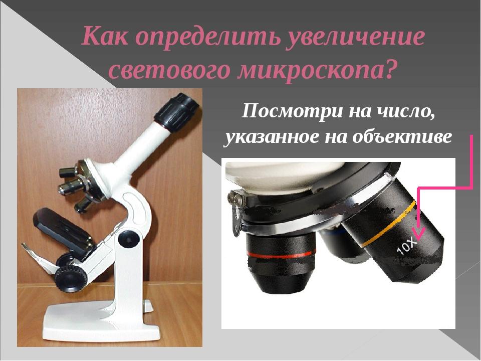 Как определить увеличение светового микроскопа? Посмотри на число, указанное...