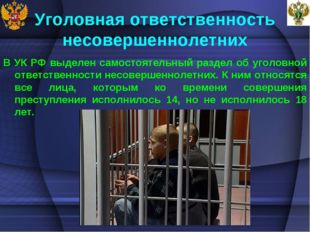 Уголовная ответственность несовершеннолетних В УК РФ выделен самостоятельный