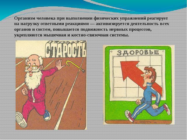 Организм человека при выполнении физических упражнений реагирует на нагрузку...