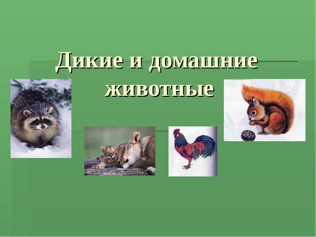 Дикие и домашние животные