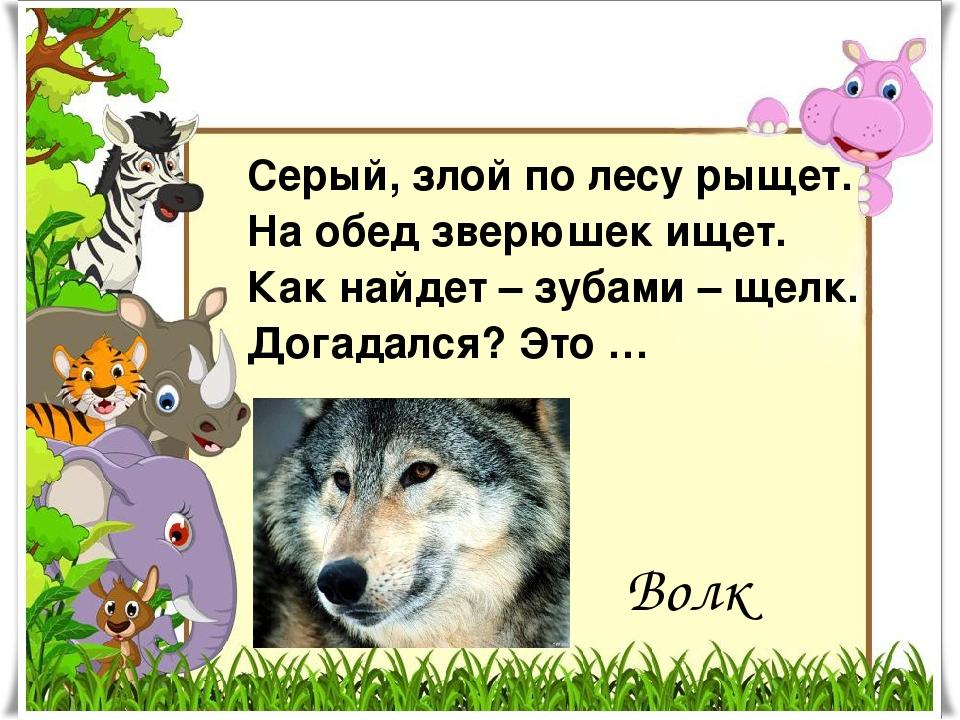 Серый, злой по лесу рыщет. На обед зверюшек ищет. Как найдет – зубами – щелк....
