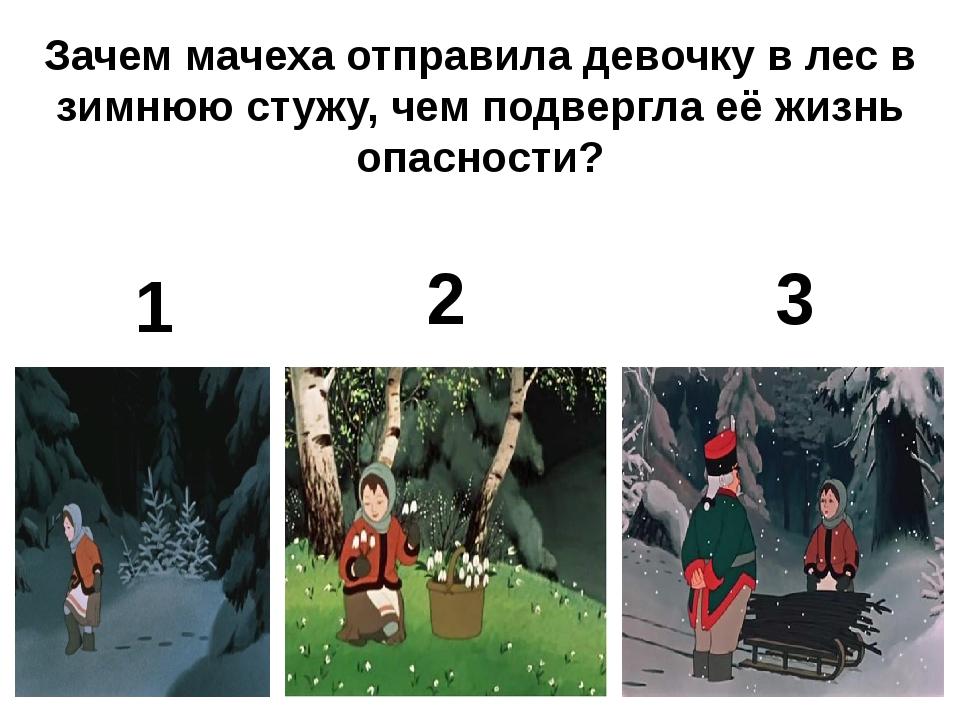 Зачем мачеха отправила девочку в лес в зимнюю стужу, чем подвергла её жизнь о...