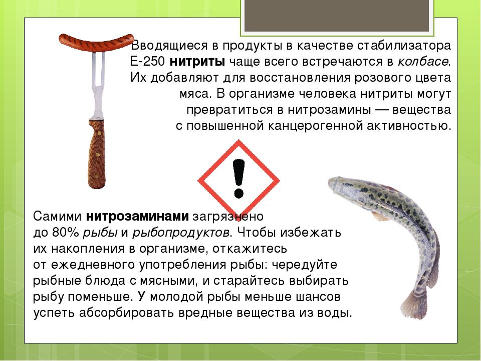 Самиминитрозаминамизагрязнено до80%рыбыирыбопродуктов. Чтобы избежать и...