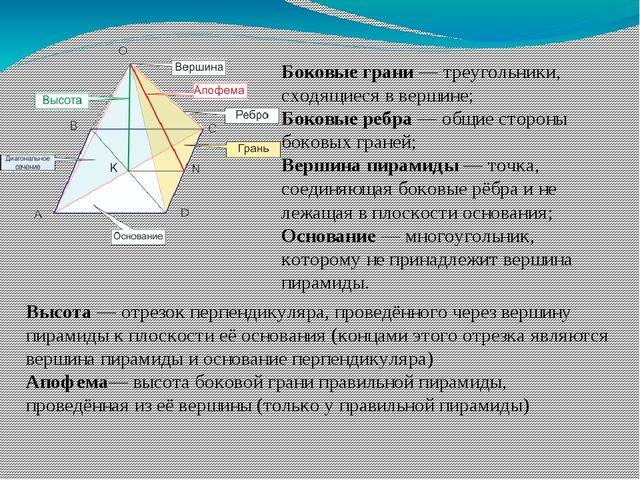 Боковые грани— треугольники, сходящиеся в вершине; Боковые ребра— общие сто...