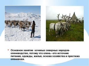 Основное занятие кочевых северных народов-оленеводство, потому что олень –это