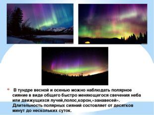 В тундре весной и осенью можно наблюдать полярное сияние в виде общего быстр