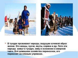 В тундре проживают народы, ведущие кочевой образ жизни. Это ненцы, чукчи, яку