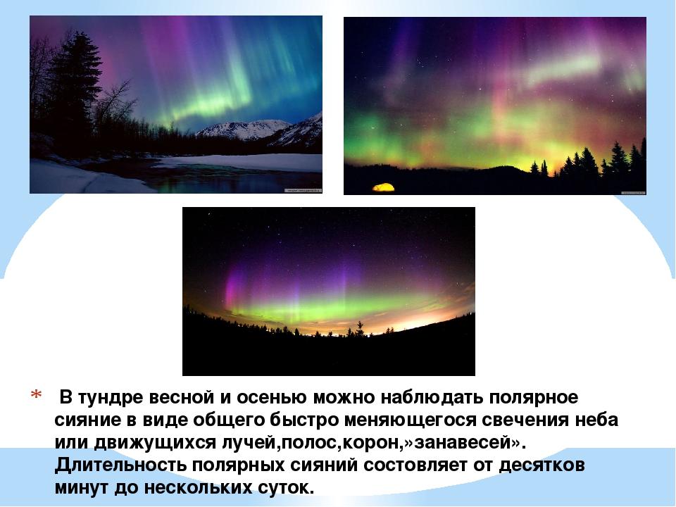 В тундре весной и осенью можно наблюдать полярное сияние в виде общего быстр...
