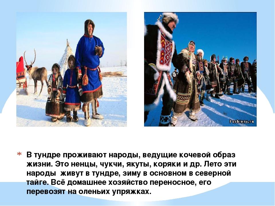 В тундре проживают народы, ведущие кочевой образ жизни. Это ненцы, чукчи, яку...