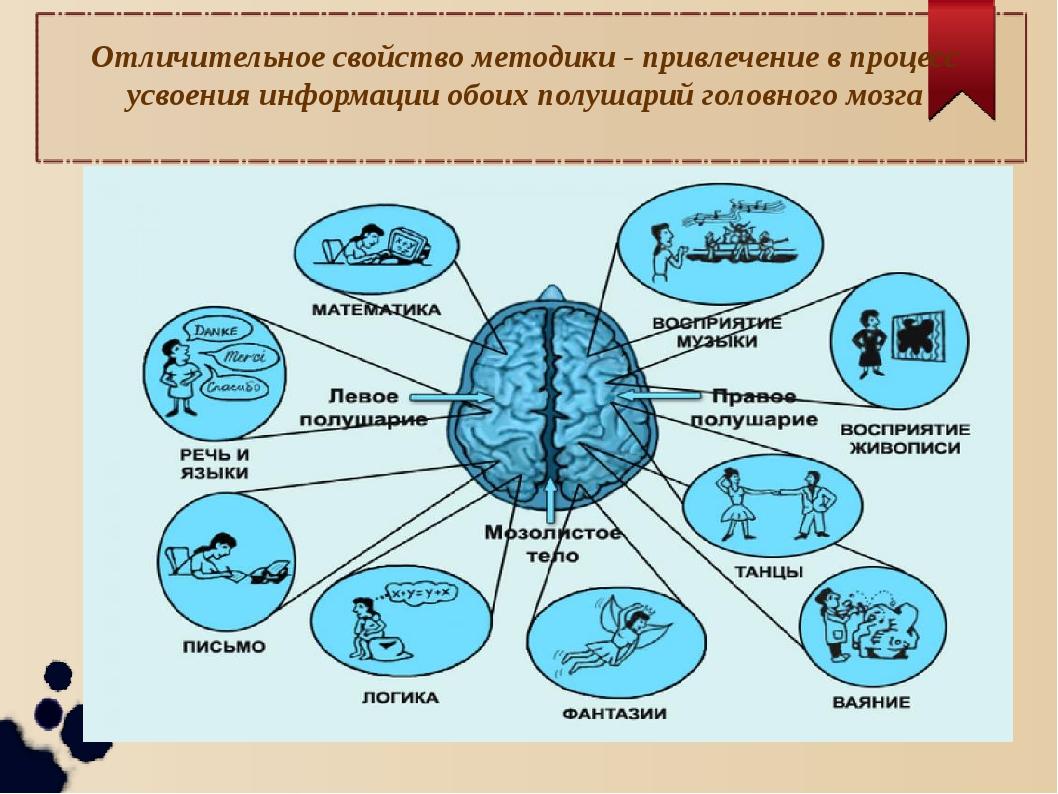 Отличительное свойство методики - привлечение в процесс усвоения информации о...