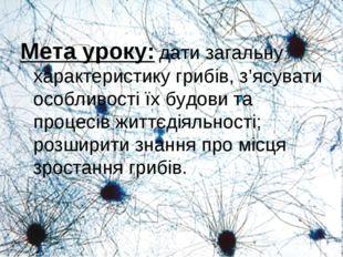 Мета уроку: дати загальну характеристику грибів, з'ясувати особливості їх буд