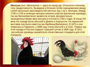 Минорка(исп.Menorquina)— одна изпород кур. Относится к яичному типу проду