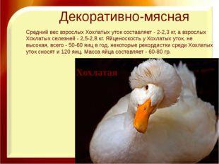 Декоративно-мясная Хохлатая Средний вес взрослых Хохлатых уток составляет - 2