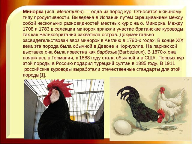 Минорка(исп.Menorquina)— одна изпород кур. Относится к яичному типу проду...