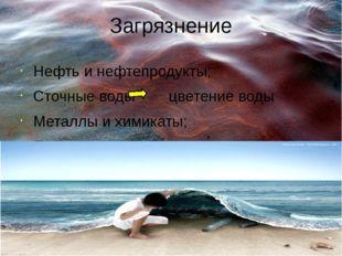 Загрязнение Нефть и нефтепродукты; Сточные воды цветение воды Металлы и химик