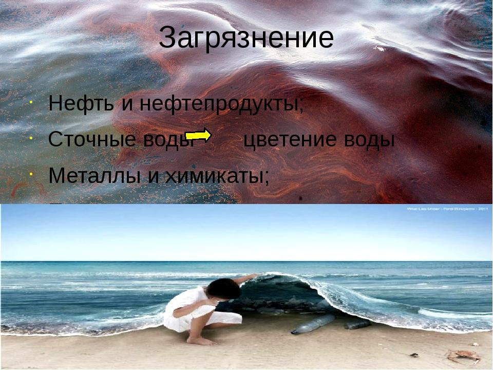 Загрязнение Нефть и нефтепродукты; Сточные воды цветение воды Металлы и химик...
