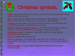 Christmas symbols. Holly- evergreen shrubs and trees usually having prickly d