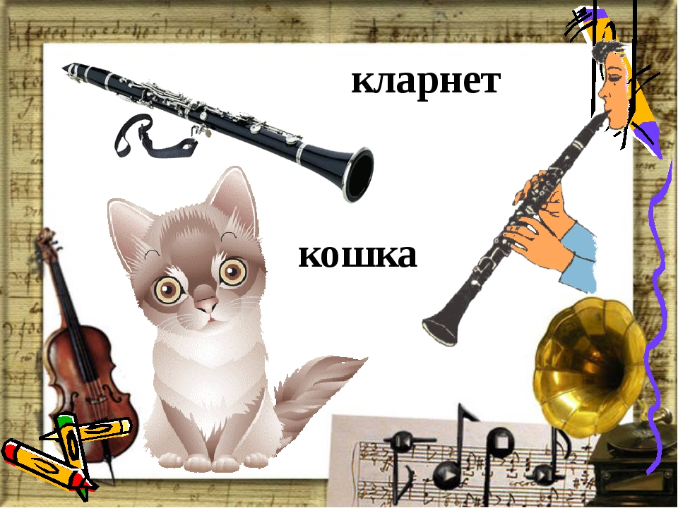 кларнет кошка