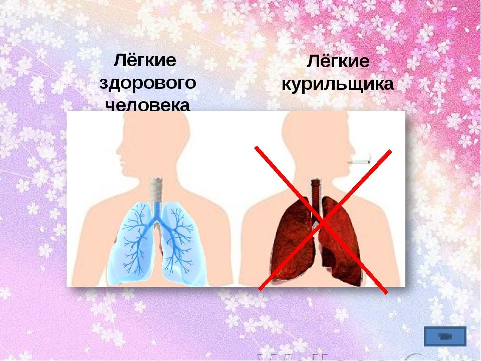 Лёгкие здорового человека Лёгкие курильщика