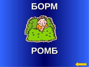 БОРМ РОМБ