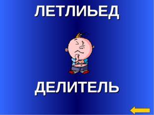 ЛЕТЛИЬЕД ДЕЛИТЕЛЬ