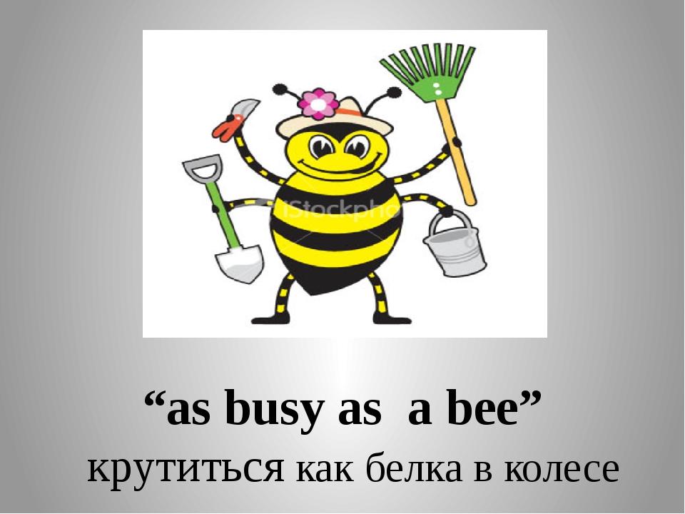 """as busy as a bee"" крутиться как белка в колесе"