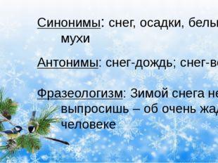 Синонимы: снег, осадки, белые мухи Антонимы: снег-дождь; снег-вода Фразеолог