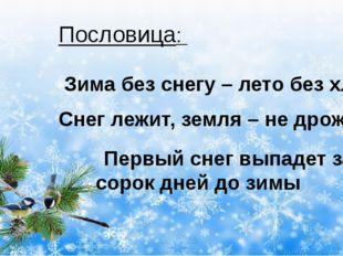 Пословица: Зима без снегу – лето без хлеба Снег лежит, земля – не дрожит Пер