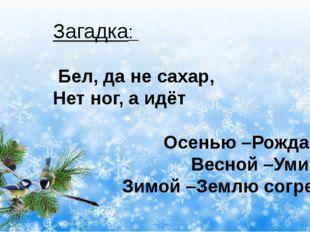 Загадка: Бел, да не сахар, Нет ног, а идёт Осенью –Рождаюсь, Весной –Умираю,