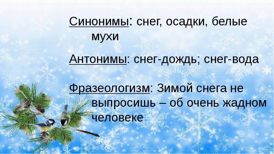 Синонимы: снег, осадки, белые мухи Антонимы: снег-дождь; снег-вода Фразеолог...
