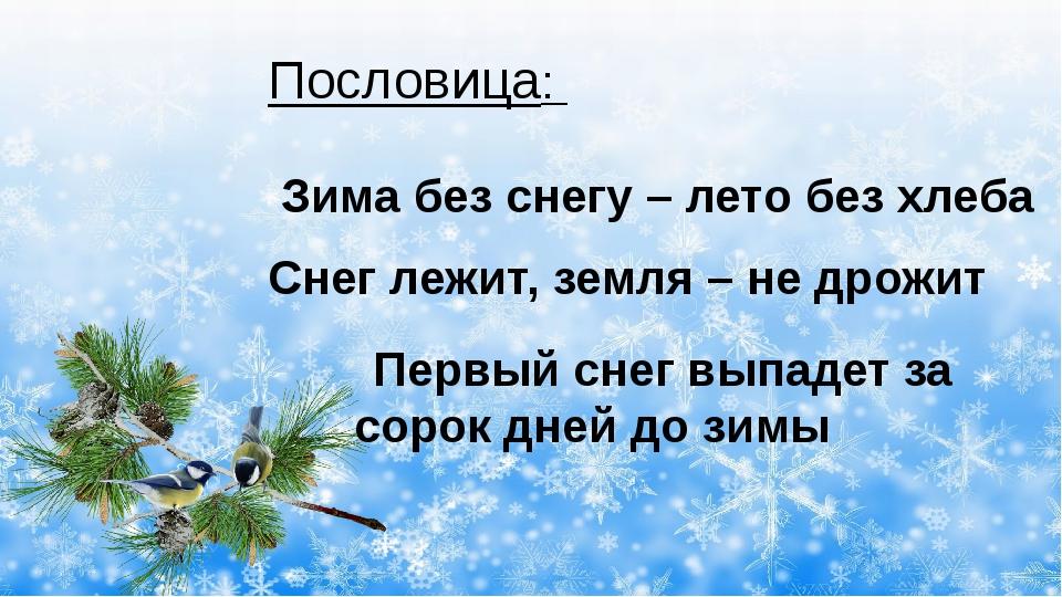 Пословица: Зима без снегу – лето без хлеба Снег лежит, земля – не дрожит Пер...