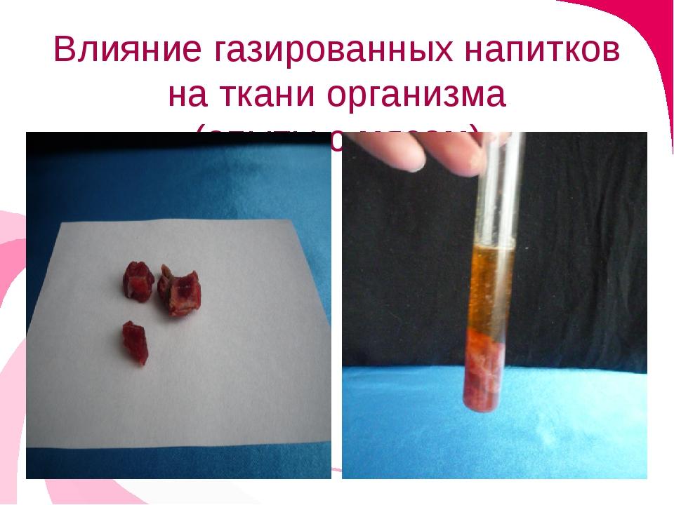 Влияние газированных напитков на ткани организма (опыты с мясом)