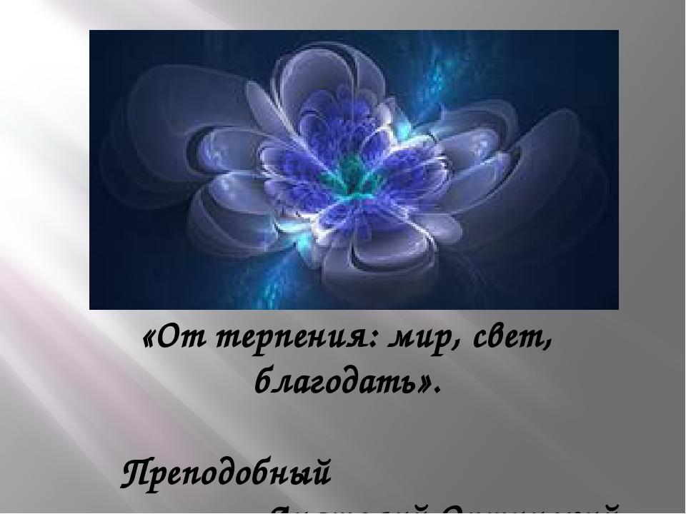 «От терпения: мир, свет, благодать». Преподобный Анатолий Оптинский