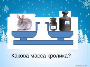 1кг 3кг Какова масса кролика? corowina.ucoz.com
