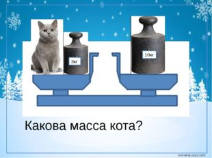 3кг 10кг Какова масса кота? corowina.ucoz.com