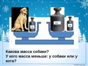 2кг 10кг 2кг Какова масса собаки? У кого масса меньше: у собаки или у кота? c