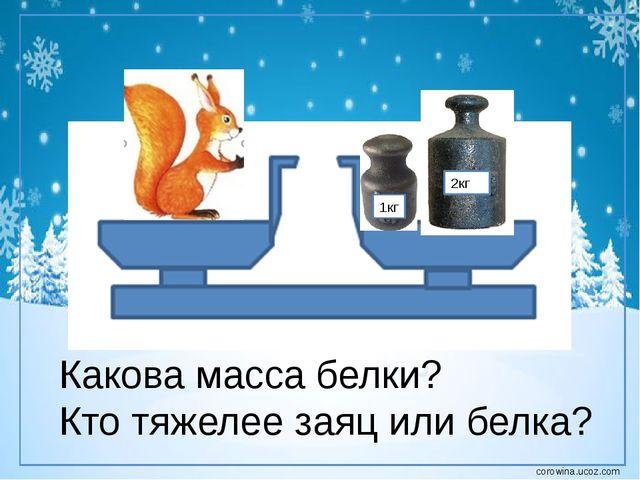 1кг 2кг Какова масса белки? Кто тяжелее заяц или белка? corowina.ucoz.com