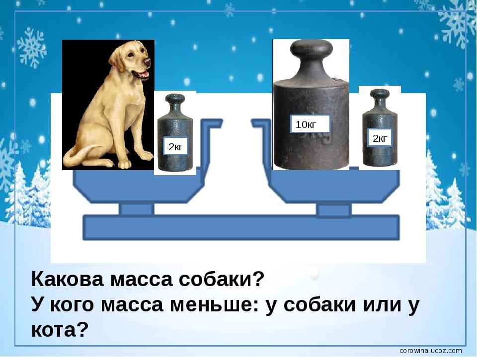 2кг 10кг 2кг Какова масса собаки? У кого масса меньше: у собаки или у кота? c...