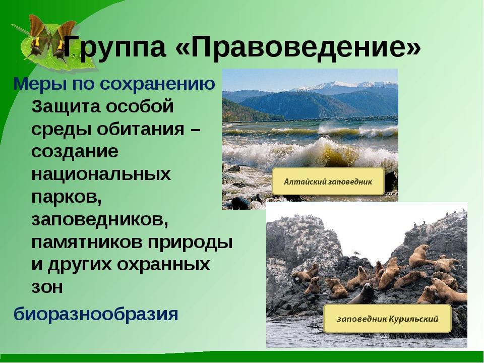 Группа «Правоведение» Меры по сохранению Защита особой среды обитания – созда...
