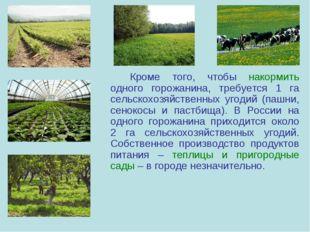 Кроме того, чтобы накормить одного горожанина, требуется 1 га сельскохозяйс