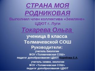 СТРАНА МОЯ РОДНИКОВАЯ Выполнил член коллектива «Земляне» ЦДЮТ г. Луги Токаре