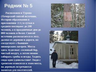 Родник № 5 Расположен в Турово (Печерский святой источник. История образовани