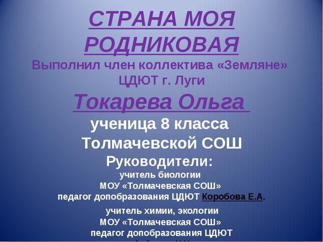 СТРАНА МОЯ РОДНИКОВАЯ Выполнил член коллектива «Земляне» ЦДЮТ г. Луги Токаре...