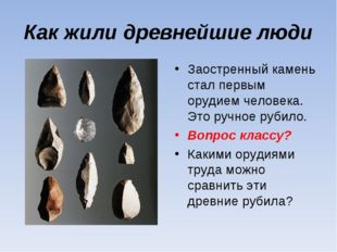 Как жили древнейшие люди Заостренный камень стал первым орудием человека. Это