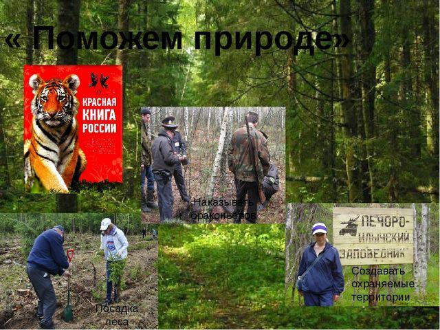 « Поможем природе» Посадка леса Наказывать браконьеров Создавать охраняемые...