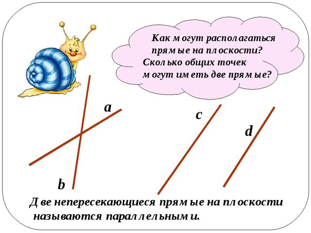 Проведите две прямые так, чтобы у них было разное взаимное расположение на п...