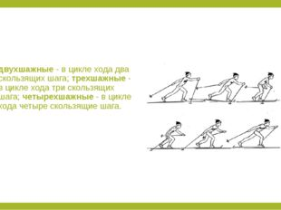 двухшажные - в цикле хода два скользящих шага; трехшажные - в цикле хода три