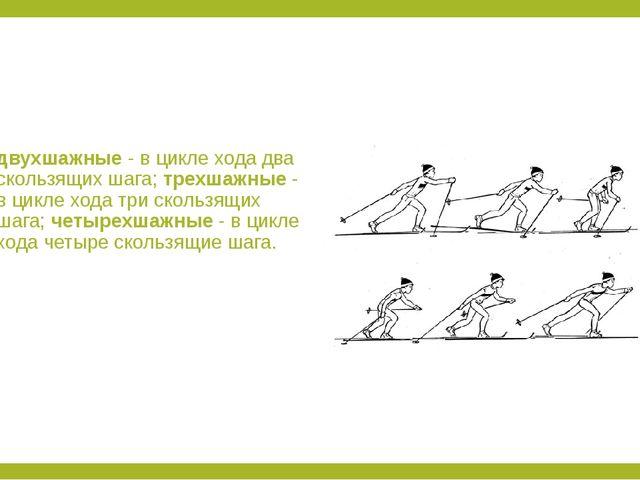 двухшажные - в цикле хода два скользящих шага; трехшажные - в цикле хода три...