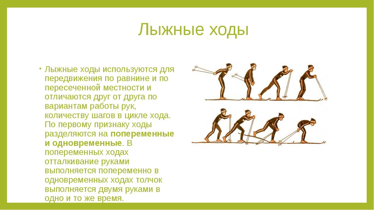 Лыжные ходы Лыжные ходы используются для передвижения по равнине и по пересе...